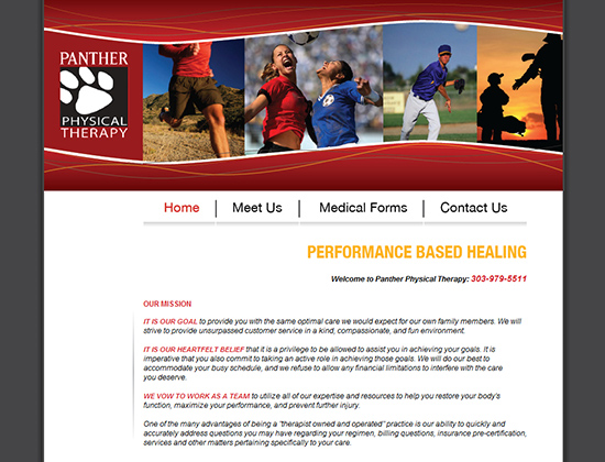 PANTHER PHYSICAL THERAPY | website design